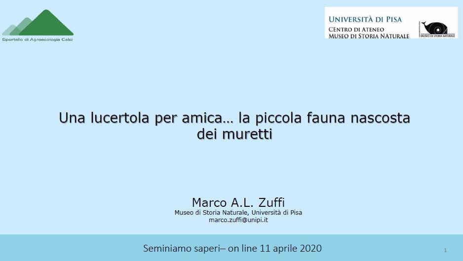 Frontespizio della presentazione che Marco zuffi ha fatto per il Seminiamo Saperi online dell'11 aprile 2020, scaricabile qui con un click.
