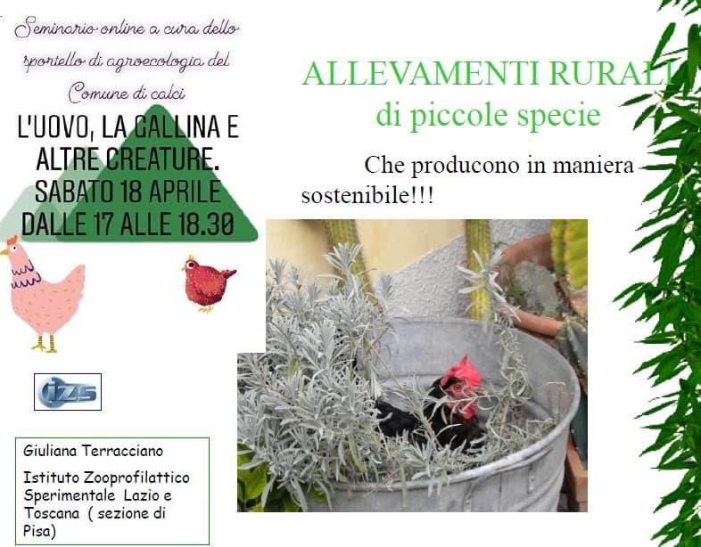 Presentazione di Giuliana Terracciano
